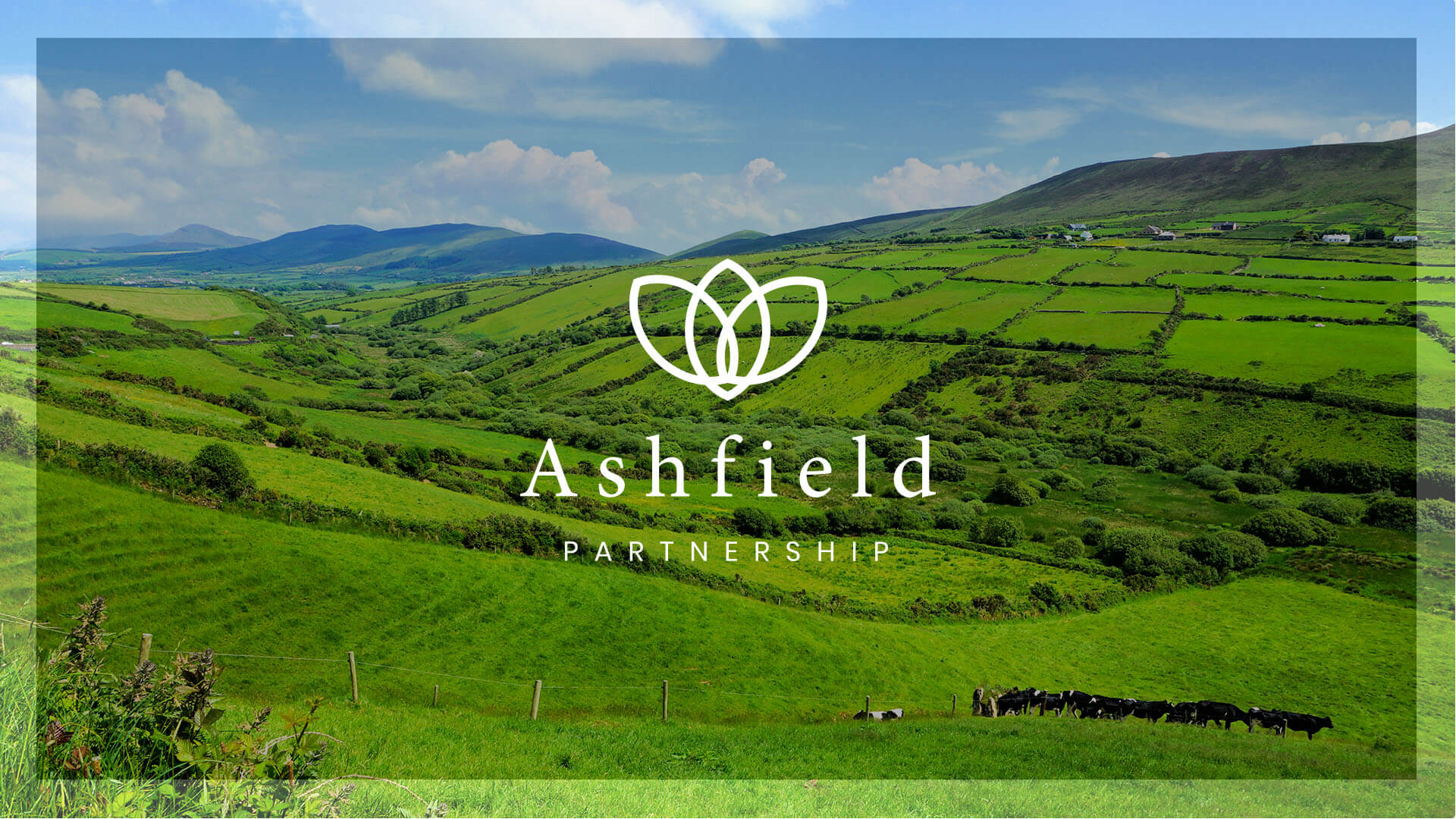 Ashfield Partnership Country View